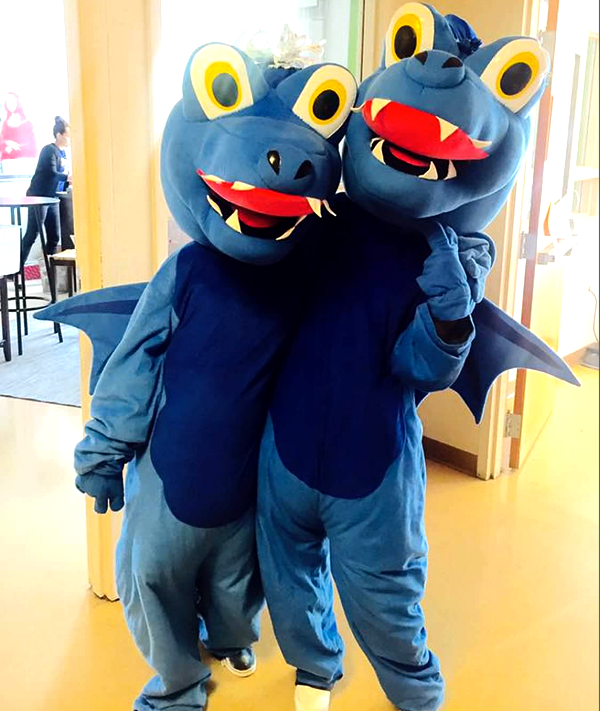 The School Dragons